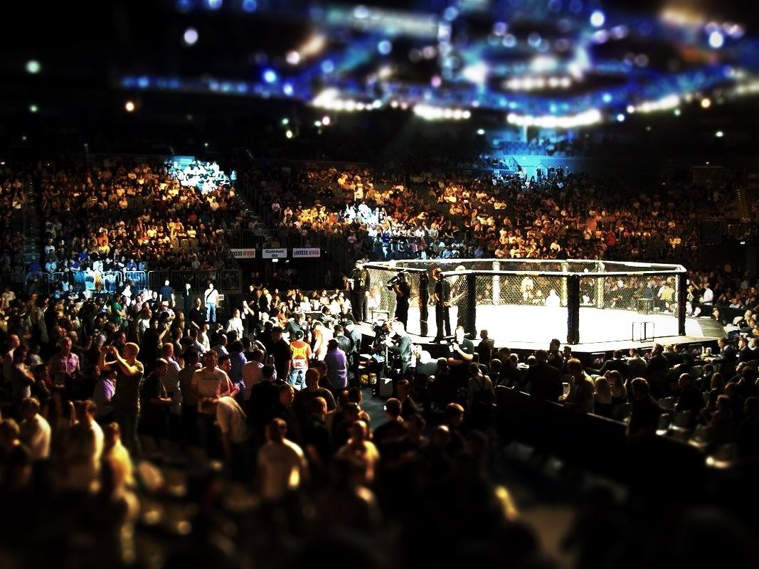 Bruderkampf im MMA