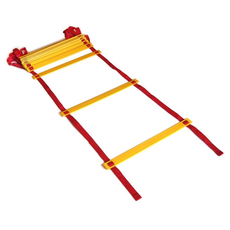 Phoenix Agility Leiter 10 Stufen