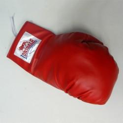 Abverkauf Lonsdale Giant Promo Glove Autogrammhandschuh