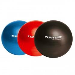 Tunturi Gymnastikball 65cm