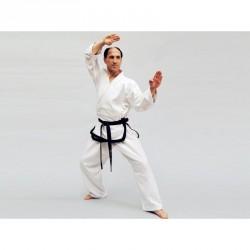 Phoenix Taekwondo Meister Dobok Traditional