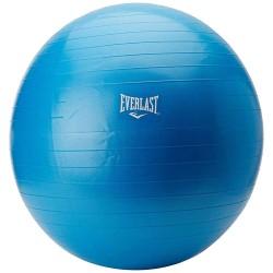Abverkauf Everlast Anti Burst Gymnastikball 75cm