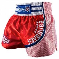 Hayabusa Lion Warrior Muay Thai Shorts Red Blue