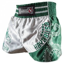 Hayabusa Sacred Muay Thai Shorts Silver Green