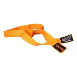 Hayashi Budogürtel Kampfkatzen Orange