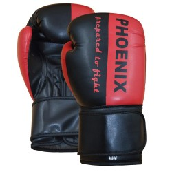 Phoenix PX Boxhandschuh Prepared to Fight Rot Junior