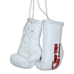 Top Ten Mini Boxhandschuhe Kickboxing