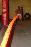 Abverkauf Stroops MMA The Beast Anaconda